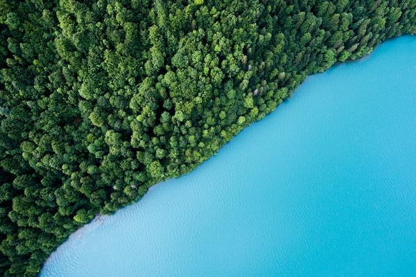Bird's eye view of a blue lake's shoreline that is lined with a dense, green forest