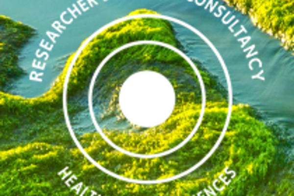 the researcher consultancy sciences