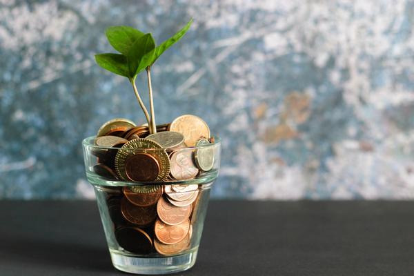 A small green plant emerges from a small jar filled with coins from different