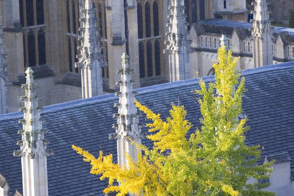 rd spires
