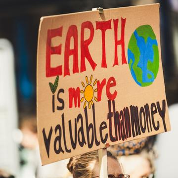 """A homemade protest placard reads in bright-coloured paint """"Earth is more valuable than money"""", including a painting of a plant, a sun, and the earth"""